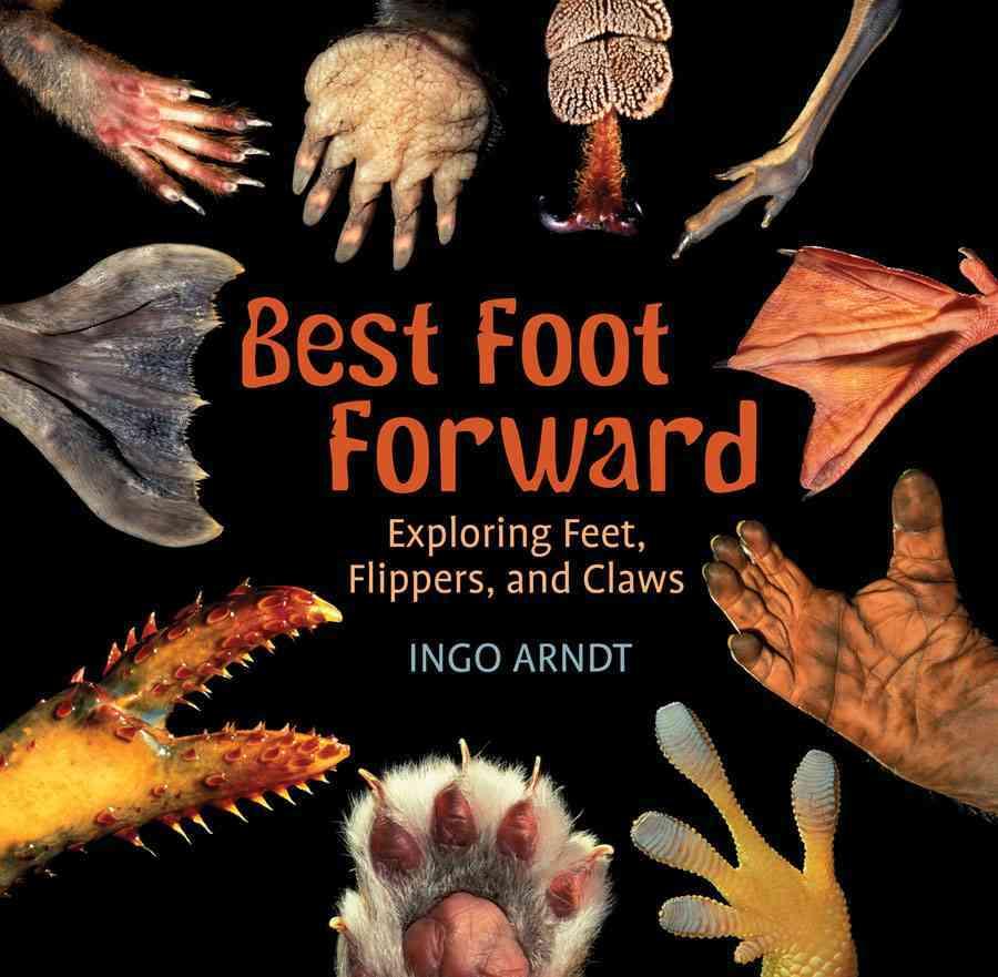 Best Foot Forward By Arndt, Ingo/ Arndt, Ingo (PHT)
